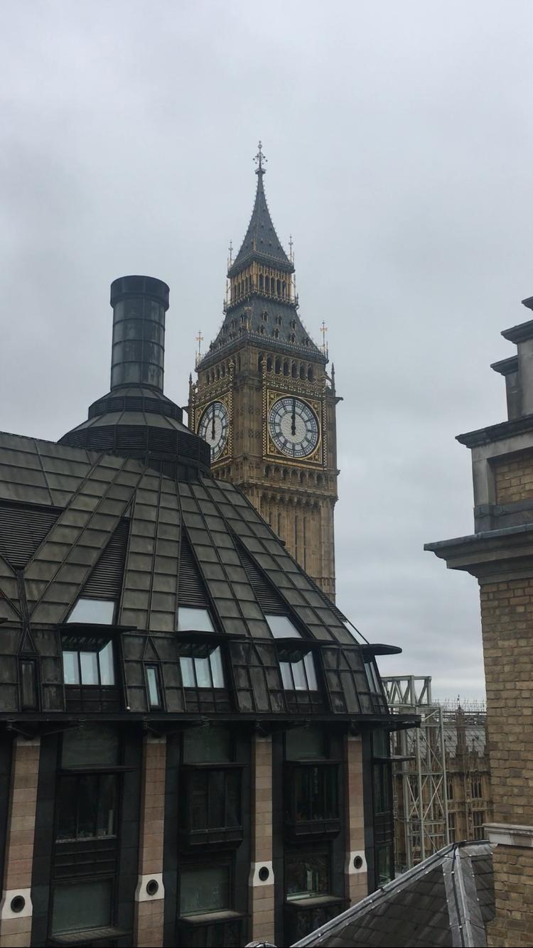 Parliamentary Roundup